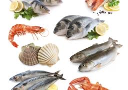 ความเข้าใจผิดเกี่ยวกับอาหารทะเล